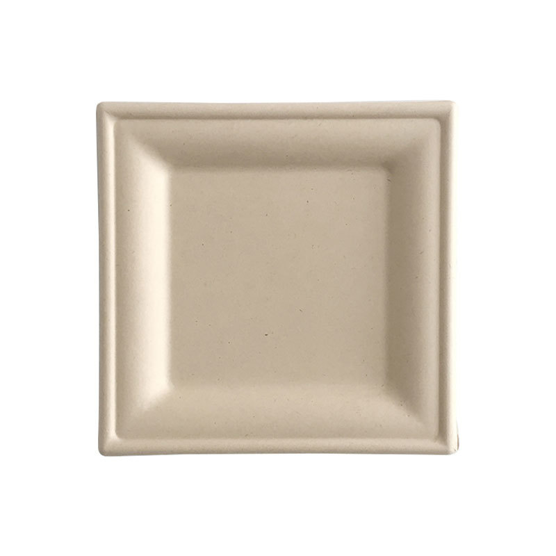 Square  Biodegradable Plate Disposables