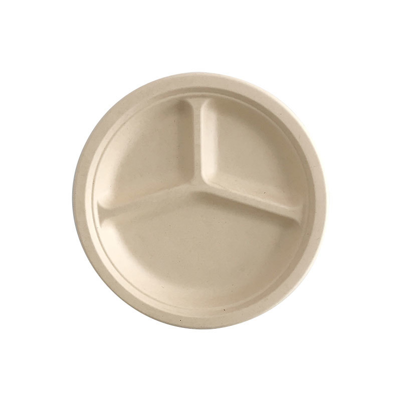 Three Compartment Bio Disposable Food Plate