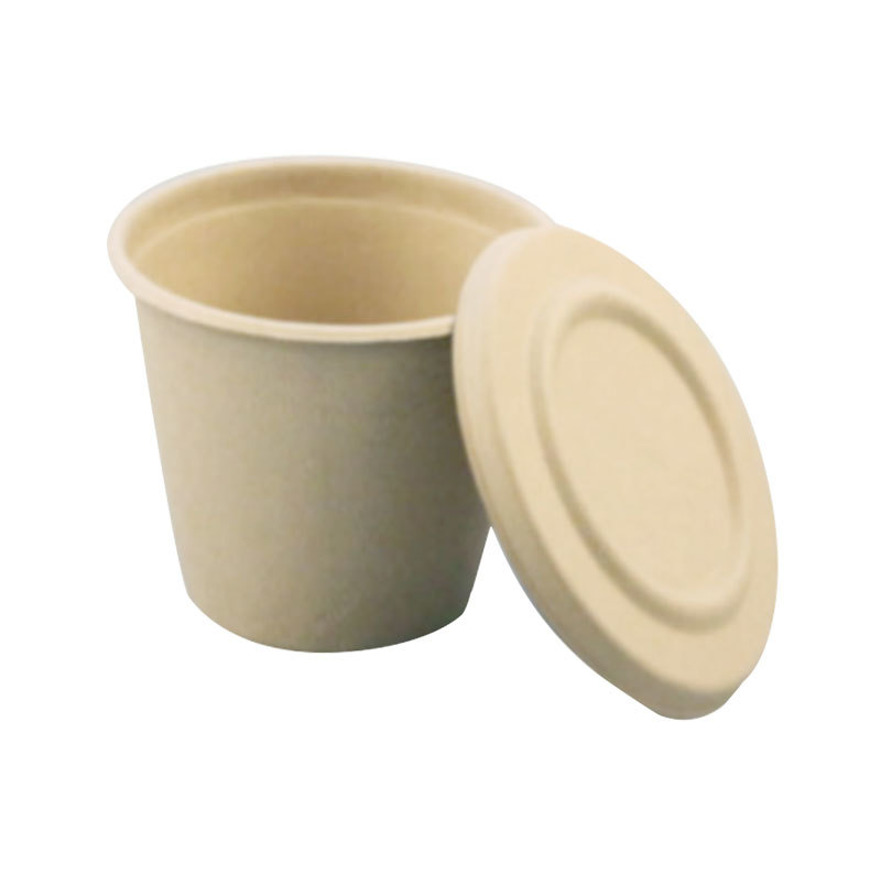 Microwave Safe Biodegradable Cup Hinged Lid