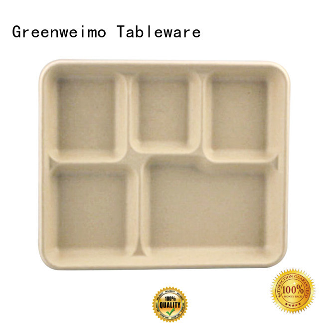 healthy biodegradable tray available for oily food