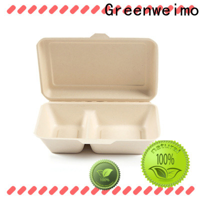 Best green containers takeaway company for food