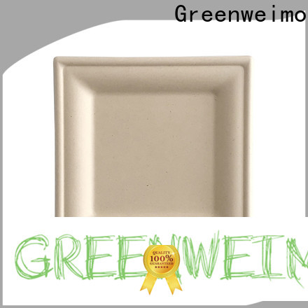 Greenweimo Top wholesale disposable dinnerware company for party