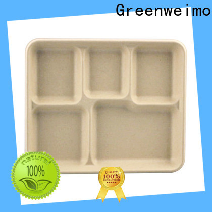 New biodegradable paper products bagasse manufacturers for oily food