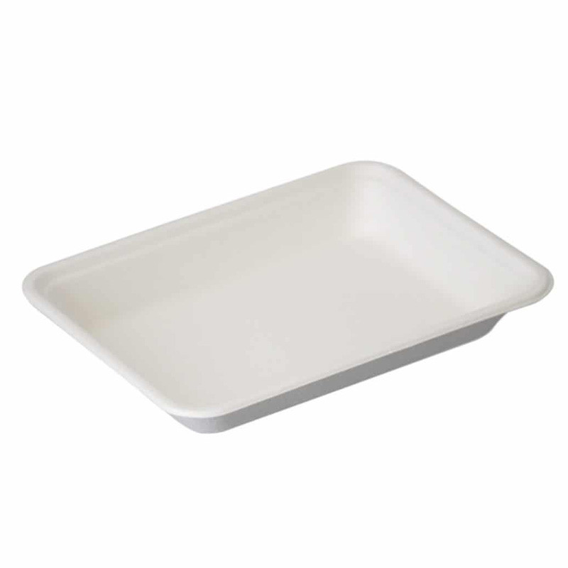 Sugarcane Bagasse White Tray Food Contanier