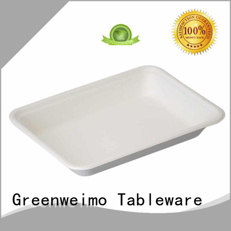 tray bagasse trays available for oily food