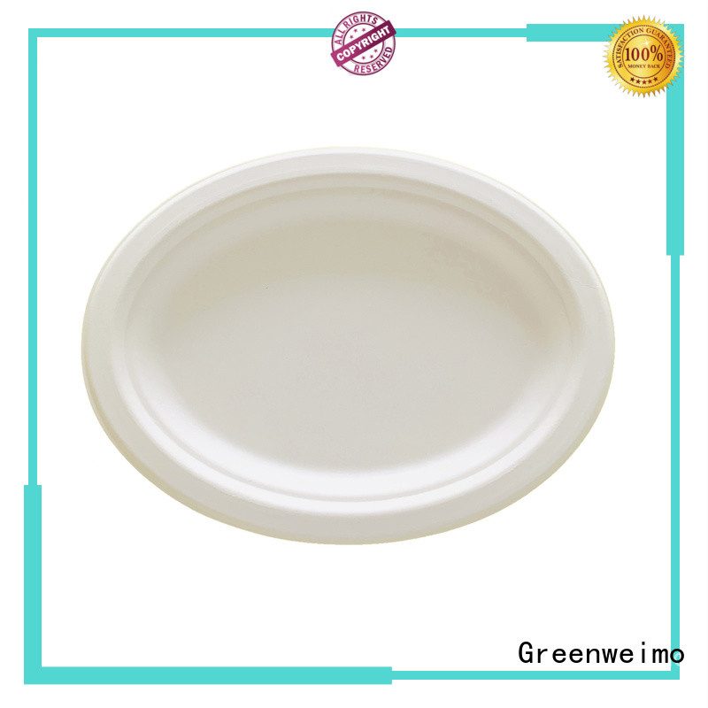 Greenweimo round echo dinnerware Supply for party