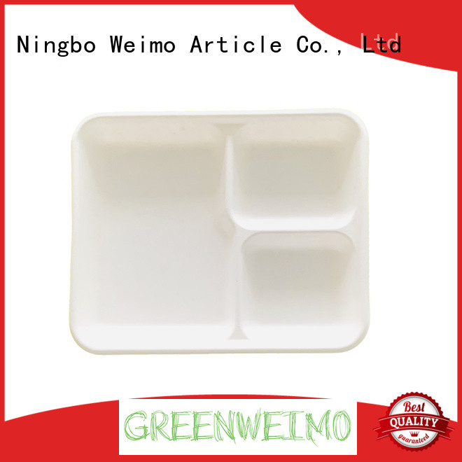 online biodegradable tray on sale for party