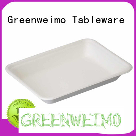 useful biodegradable tray available for oily food
